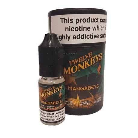 Mangabeys By Twelve Monkeys