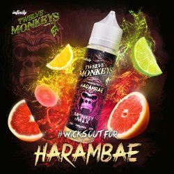 Twelve Monkeys Harambe 50ml Shortfill